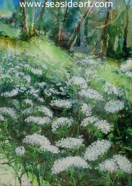 Queen Anne's Lace by Gary Spicer - Seaside Art Gallery