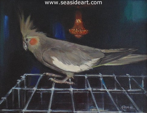 Realistic Study of A Cockatiel by Gregory Kavalec - Seaside Art Gallery