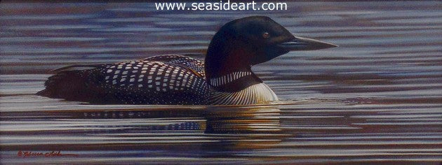 Latham R-River's Calm (Common Loon)