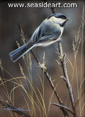Season's Warmth (Chickadee)