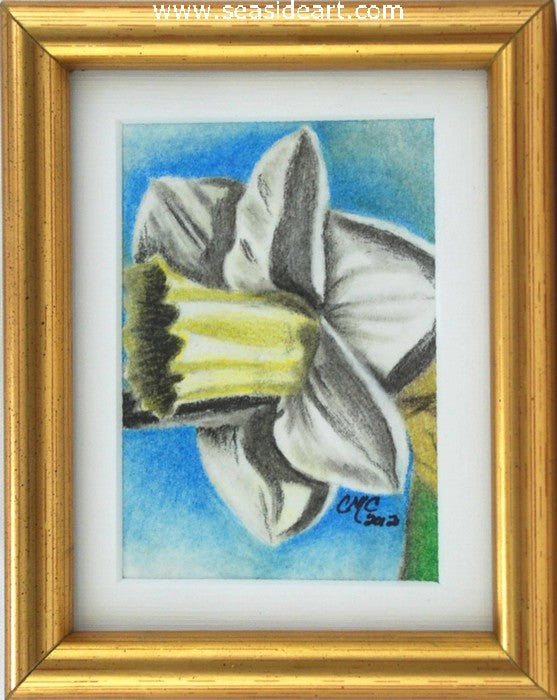 Spring - Daffodil by Connie Cruise - Seaside Art Gallery
