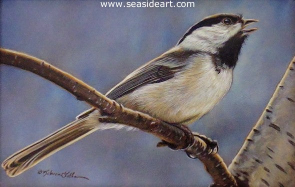 Spring Song (Chickadee) by Rebecca Latham - Seaside Art Gallery
