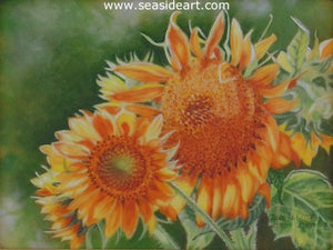 Sunflower's Golden Glory by Beverly Abbott - Seaside Art Gallery