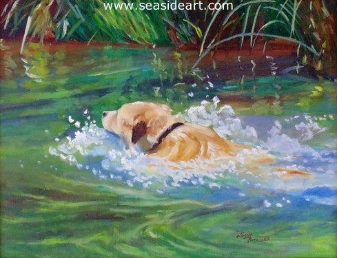 Bauer-Swimming in Oak Creek