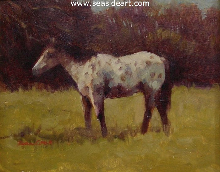 The Appaloosa Gelding by Jean Cook - Seaside Art Gallery