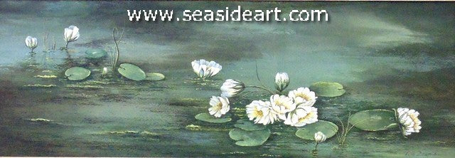 Water Lily Dreams