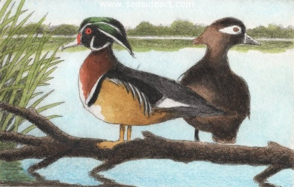 D-Wood Ducks IV by David Hunter - Seaside Art Gallery