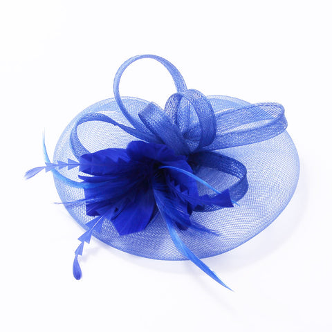 Fascinator feathers and loops