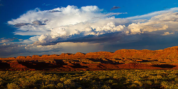 Speak Up for Bears Ears National Monument