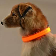 Pets Premium Glow-In-The-Dark LED Safety Collar