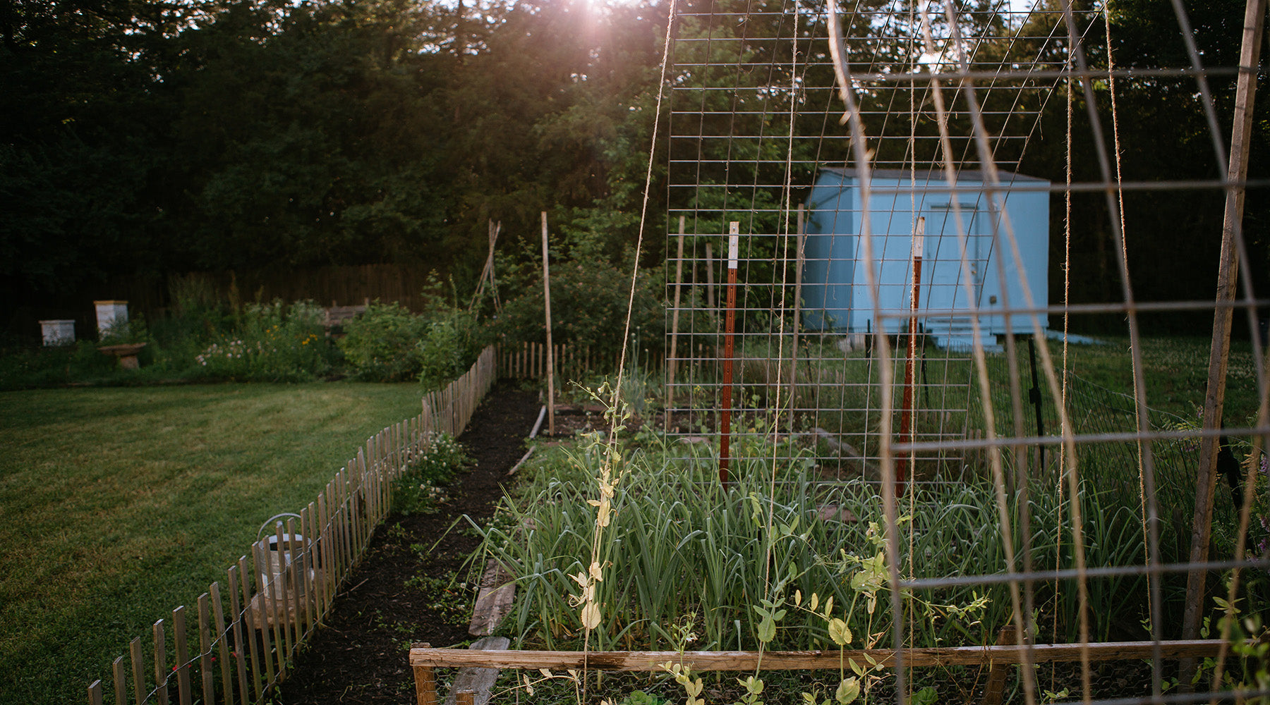 October | Getting The Most Out of Your Garden