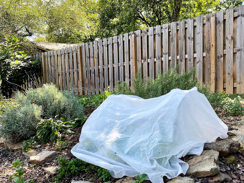 Row Cover to Avoid Frost Damage in the Garden