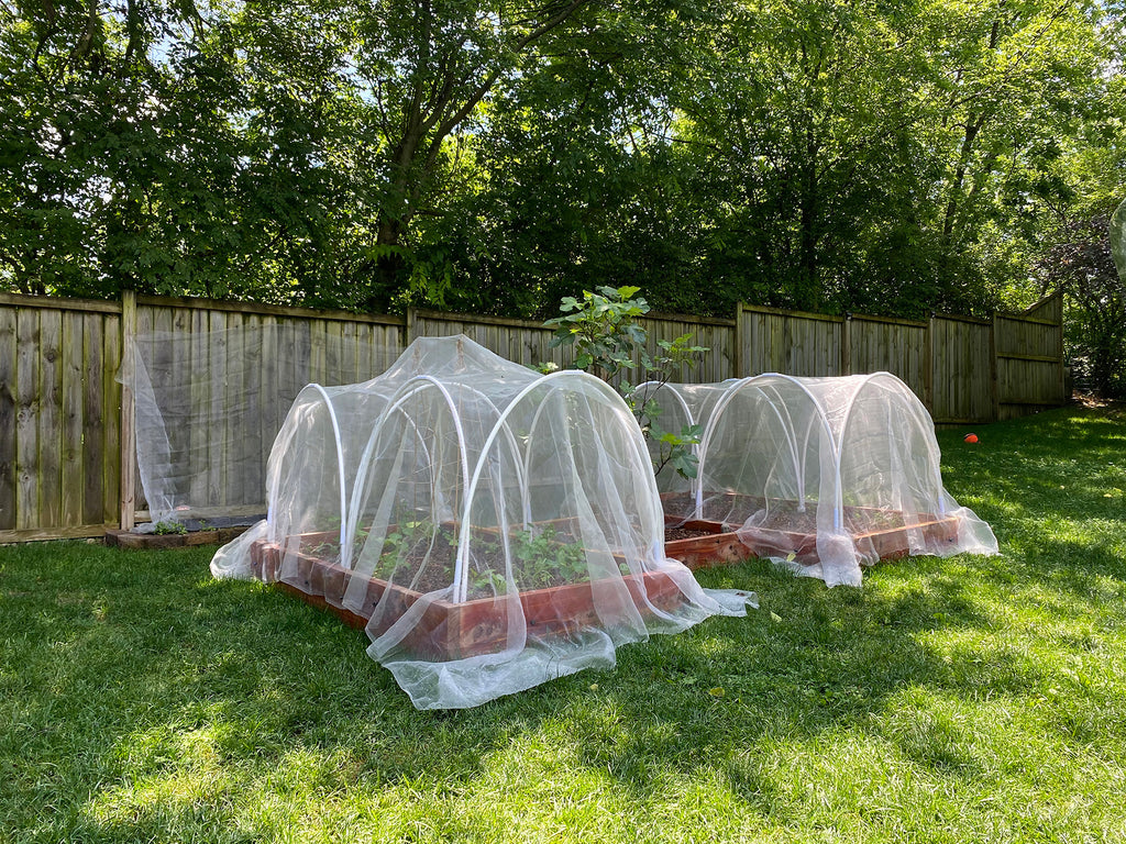 Raised Garden Beds with Netting