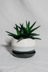 Charcoal & Alabaster Wave Planter | Small