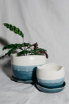 French Blue & Alabaster Wave Planter | Small