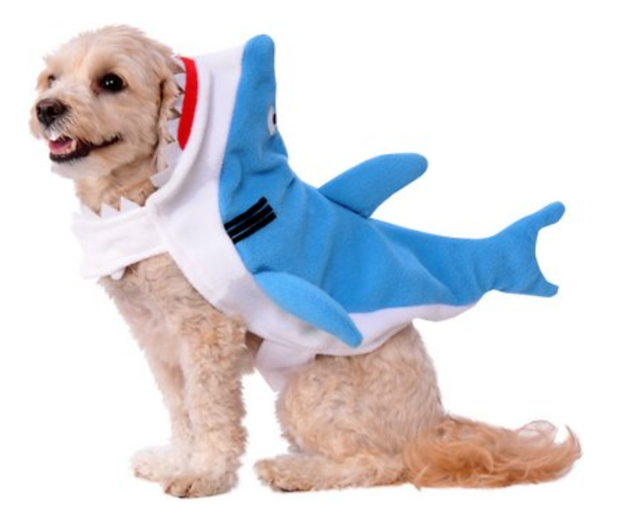 Best Shark Costumes, Goodies and More!