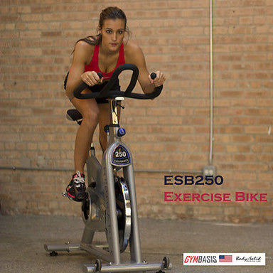 Body-Solid Endurance ESB250 Commercial Indoor Cycling Exercise Bike - GymBasis Store