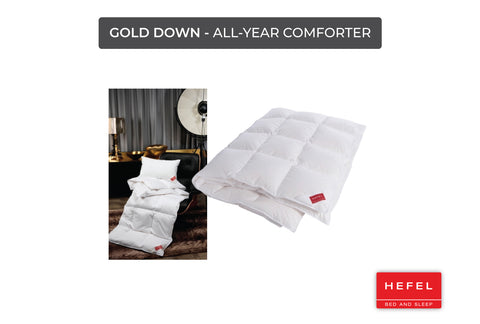 Gold Down - All-year comforter