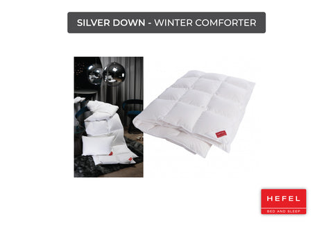 Silver Down - Winter comforter