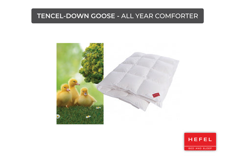 Tencel-Down Goose - All-year comforter
