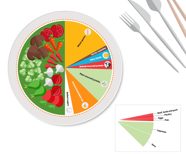 planetary health diet plate
