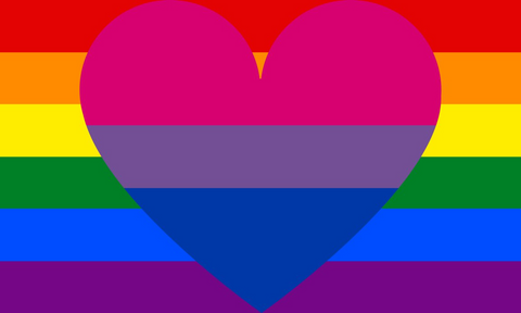 Biromantic Homosexual Flag