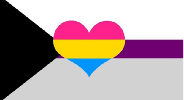 Demisexual Panromantic Pride Flag - Heart