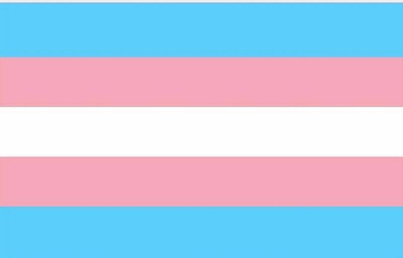 Transgender (Trans)Pride Rainbow Flag – Pride Nation