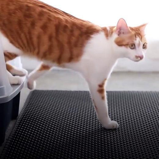 Litter Locker Cat Mat - DIGFORDEALS