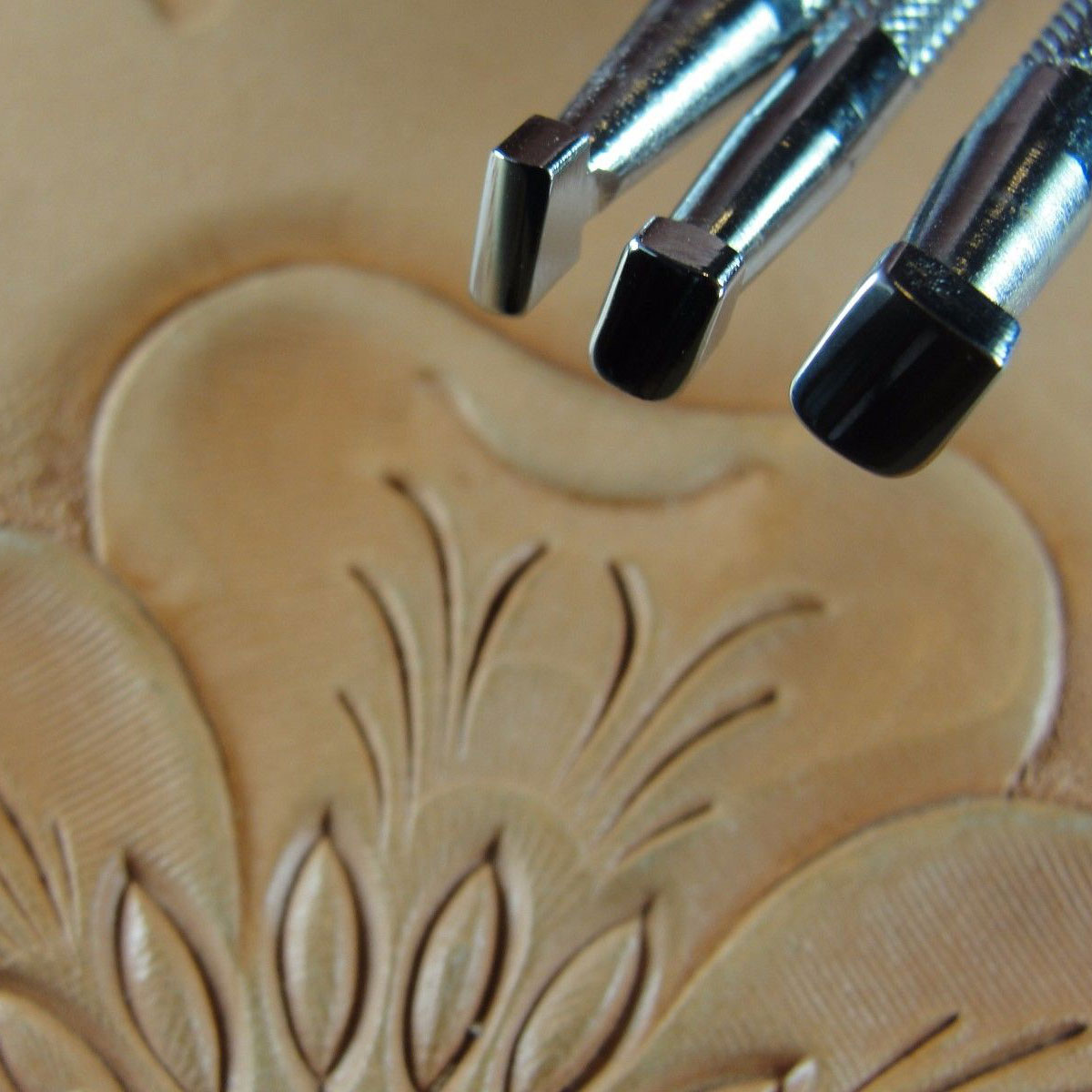 Pro Leather Carvers Leathercraft Tools Patterns Videos Downloads