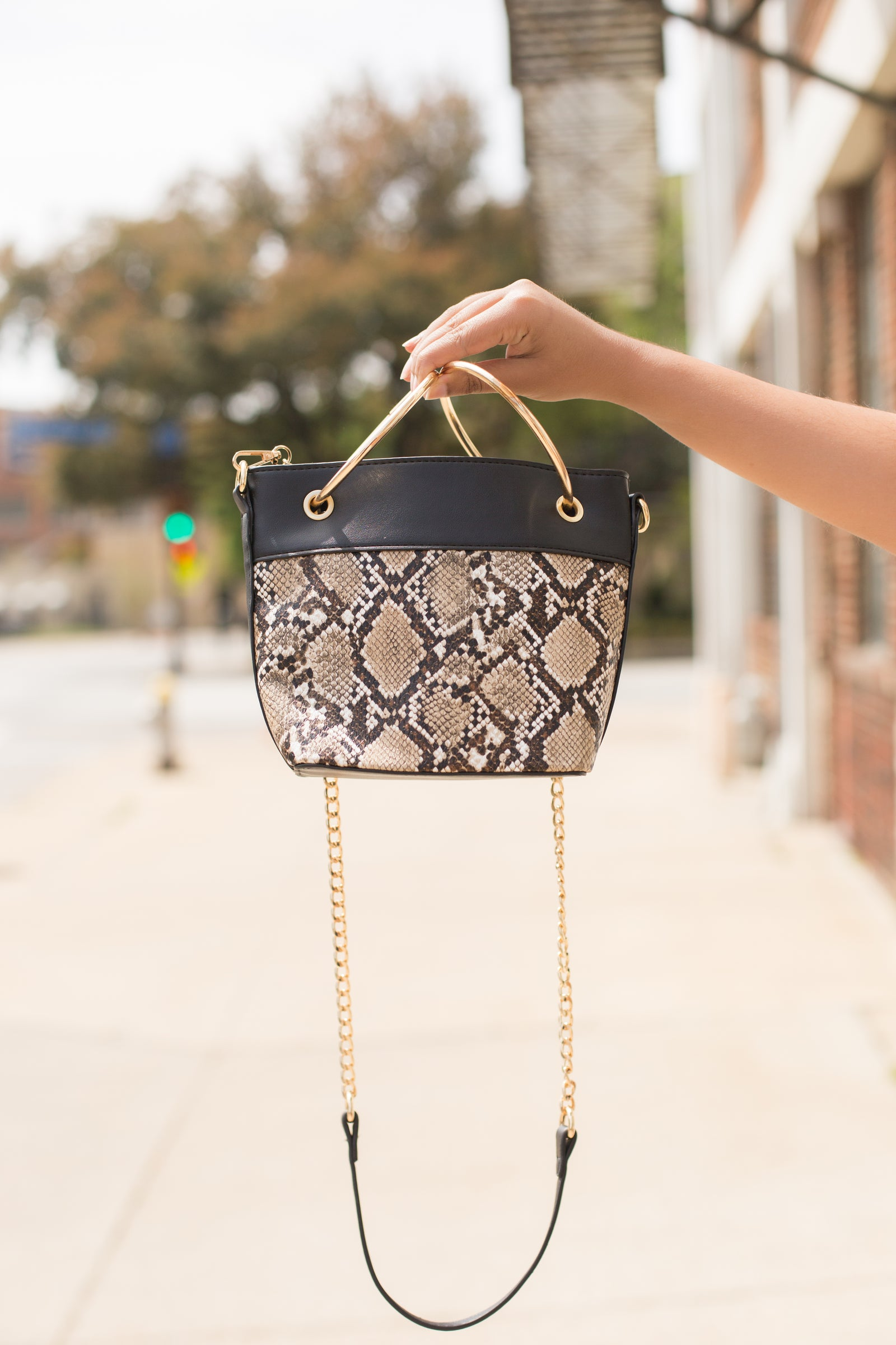 Snake Skin Satchel Bag