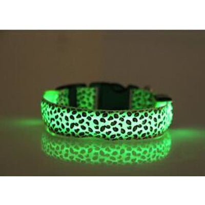 Rechargeable Led Dog Collar Collar - Extra Small (Green) 24 - 32 Cm Illuminating Illumination Light LED dog collar Pet Collar Flashing
