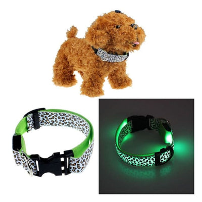 Rechargeable Led Dog Collar Collar - Medium (Green) 37 - 49 Cm Illuminating Illumination Light LED dog collar Pet Collar Flashing