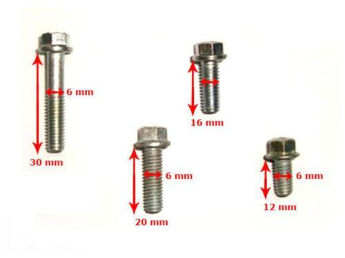 NEW HIGH QUALITY - LAMBRETTA VESPA BOLT SET (48 PIECES) 4 SIZE @ ROYAL SPARES AVAILABLE  ONLINE AT CLASSICSPAREPARTS