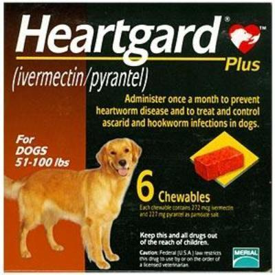 Heartgard Plus 6-Pack for Dogs 51-100 lbs