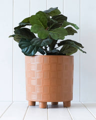 arles planter with plant by rayell