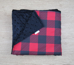 Red Plaid Minky Baby Blanket