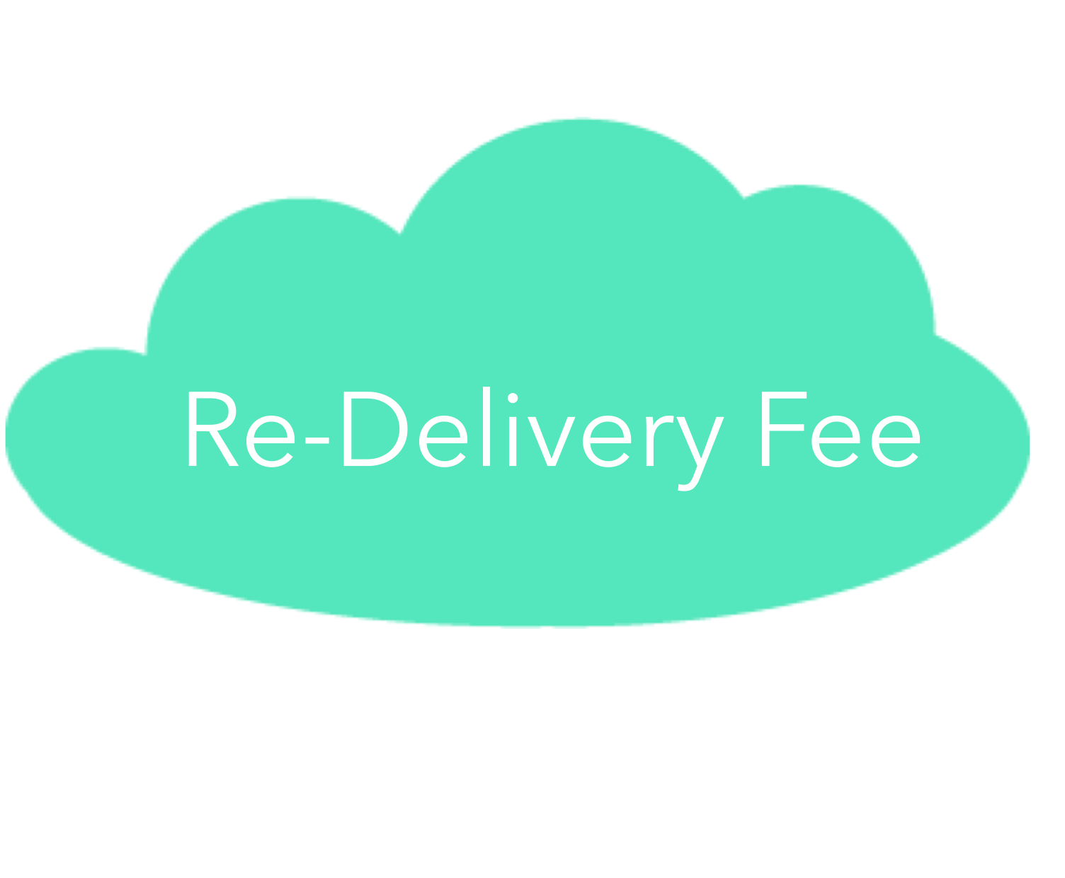 RE-DELIVERY FEE