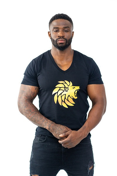 Dabati Men Classic V Neck T Shirt