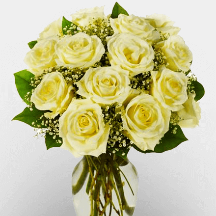 Vase of 12 White Rose