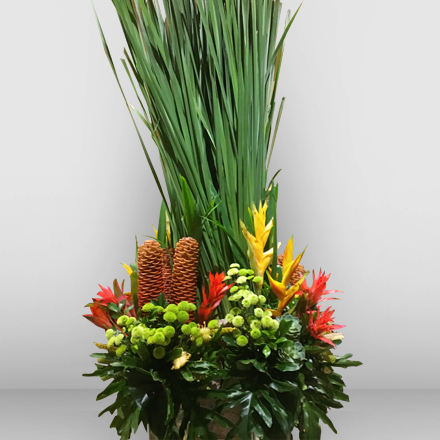 Exotic cut flowers with hot-dog leaves