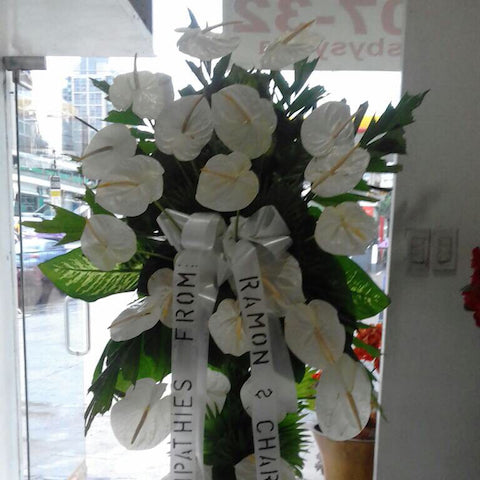 All white solo 12XL Anthuriums