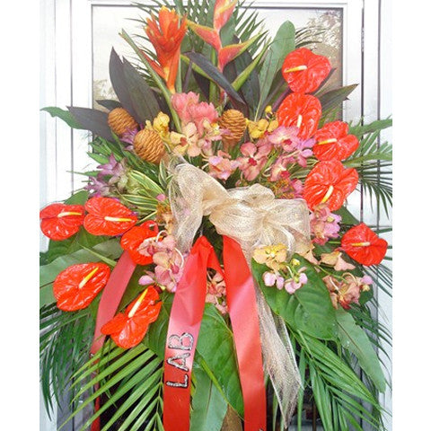 Anthuriums and Exotic Flowers
