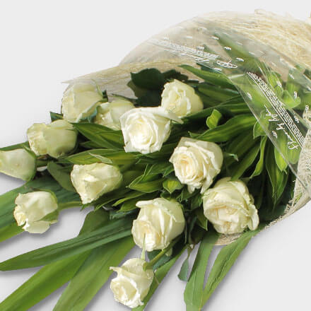 Bouquet of twelve white roses