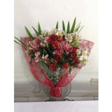 Mixed Color Alstroemeria