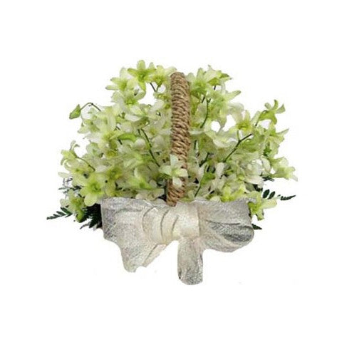 Basket of sympathy orchids