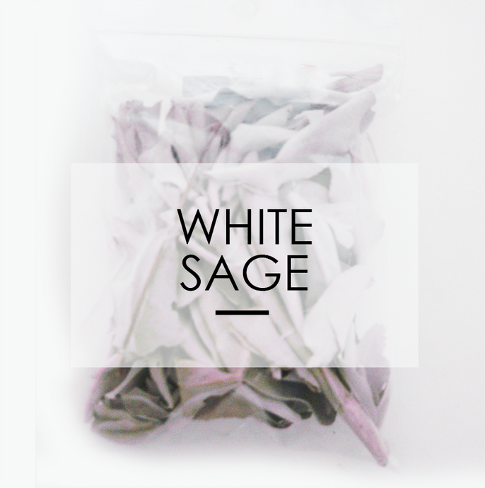 Dried White Sage Leaves