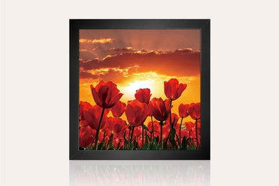 The Flowers in Bloom Acrylic Wall Art by Venini