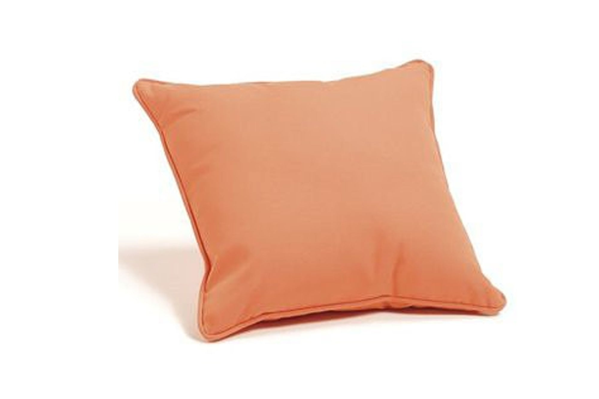 Large Outdoor Fabric Throw Pillow 22 x 22 (Set of 2)