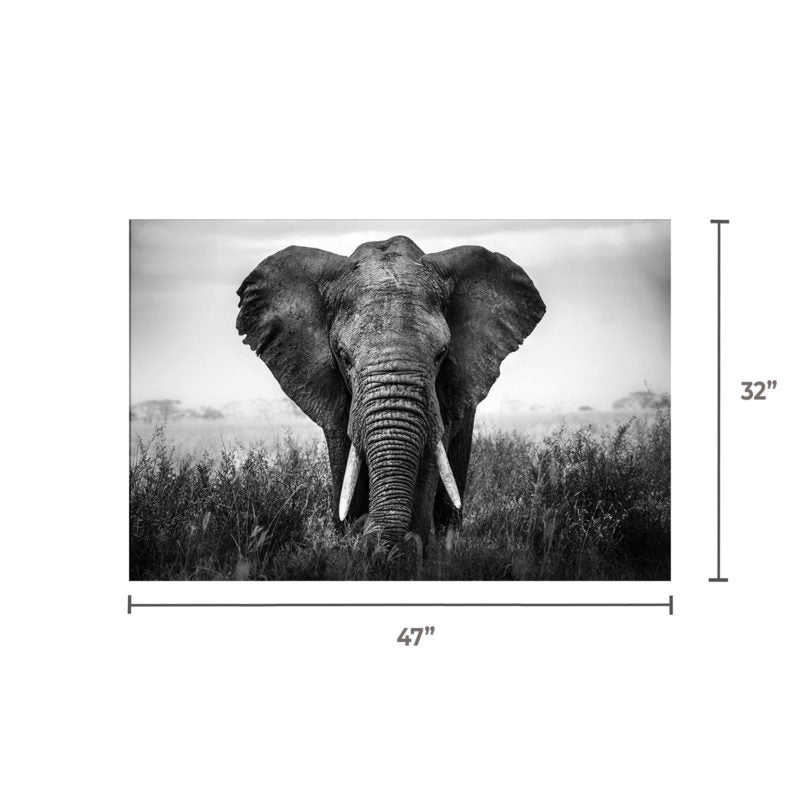 Tempered glass Elephant SU-60858